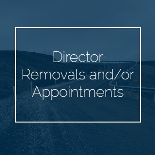Director Removals and_or Appointments